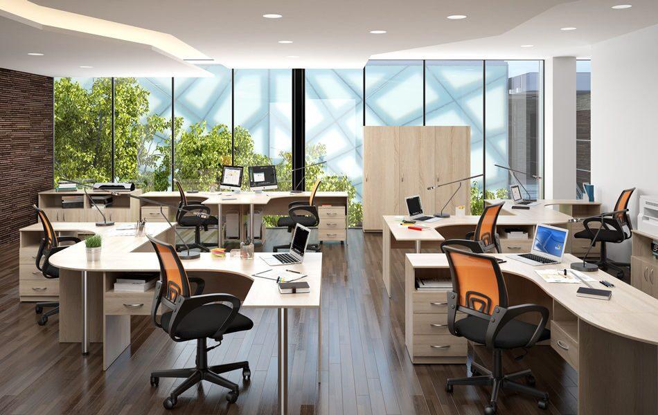 фото в офисе